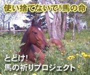 とどけ!馬の祈りプロジェクト